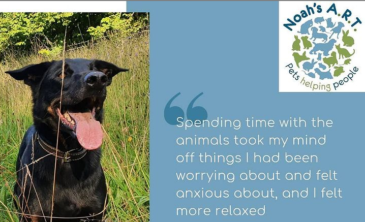 💙💚🙏 Some more lovely feedback 🙏💚💙 ➡️ Book online (link in profile) ⬅️#mentalhealth #animalassistedtherapy #pettherapy #animalassistedinterventions #mh #animaltherapy #aat #aai #therapydog https://t.co/nBjuPMEAZa