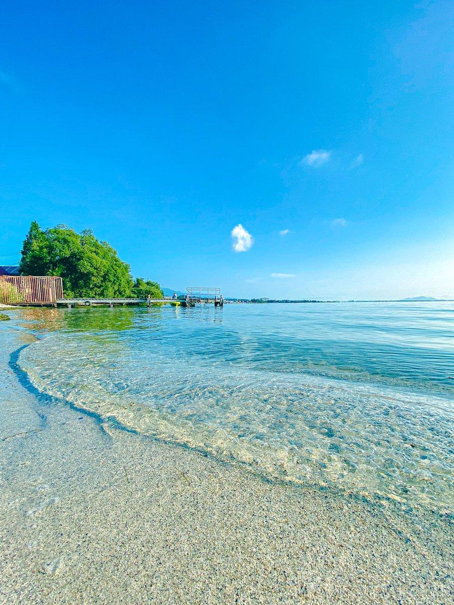 朝の琵琶湖の透明感が半端なかった