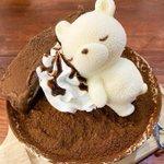 食べたいけど食べられない!?可愛いくまさんのアイスがのったかき氷!