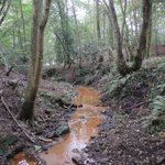 Image for the Tweet beginning: Super chalybeate ghyll stream in