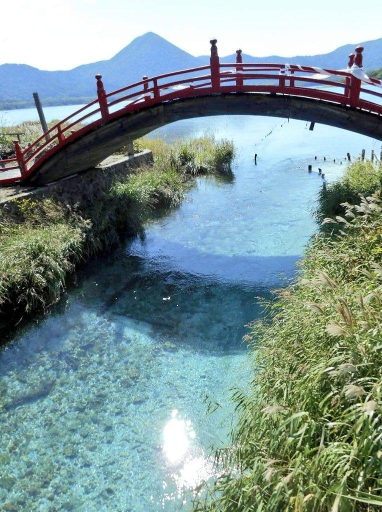 【画像】朝の琵琶湖の透明感が半端ないwwww