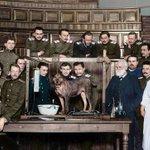 Image for the Tweet beginning: 🔬 Ivan #Pavlov a renowned