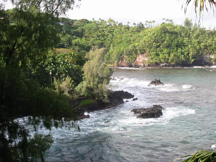 7th Order wishes you a great Monday from the Big Island of Hawaii! #bigisland #bigislandofhawaii #hawaiipictures #hawaii #7thorder#picoftheday  #indie #rockandroll #nature #photography #papaikou #onomeabay #onomea #hawaiilife #aloha #ocean #pacific
