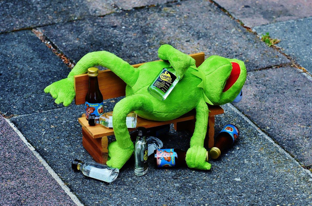It's not easy being green. #kermitthefrog #noteasybeinggreen #btw21 #booze #twitterundschnaps #longnight