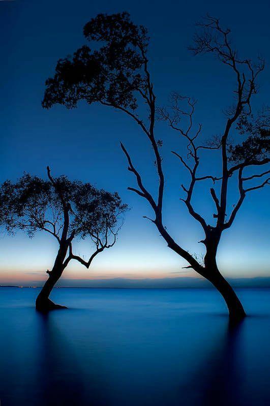 Good night. 💫 #nature #NaturePhotography