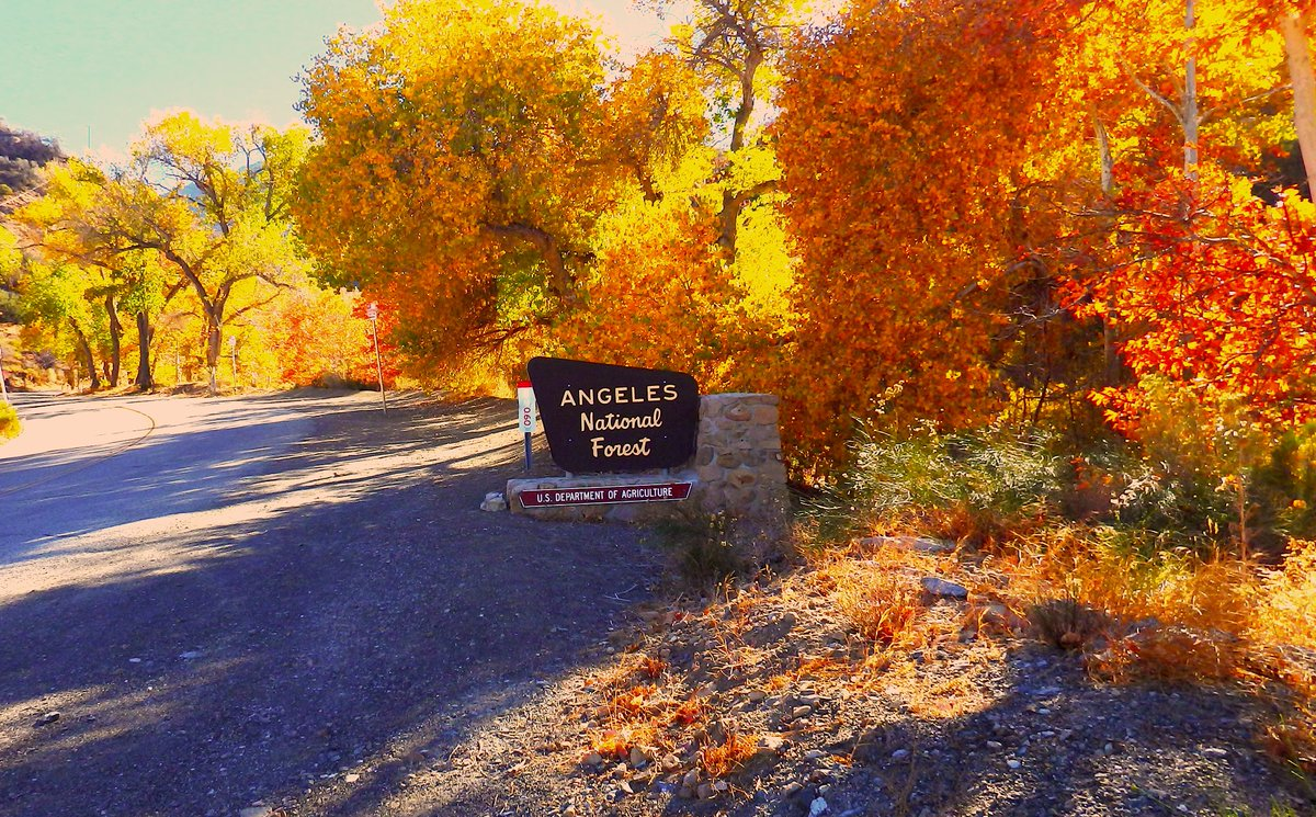 Image posted in Tweet made by Angeles National Forest on September 27, 2021, 3:31 pm UTC