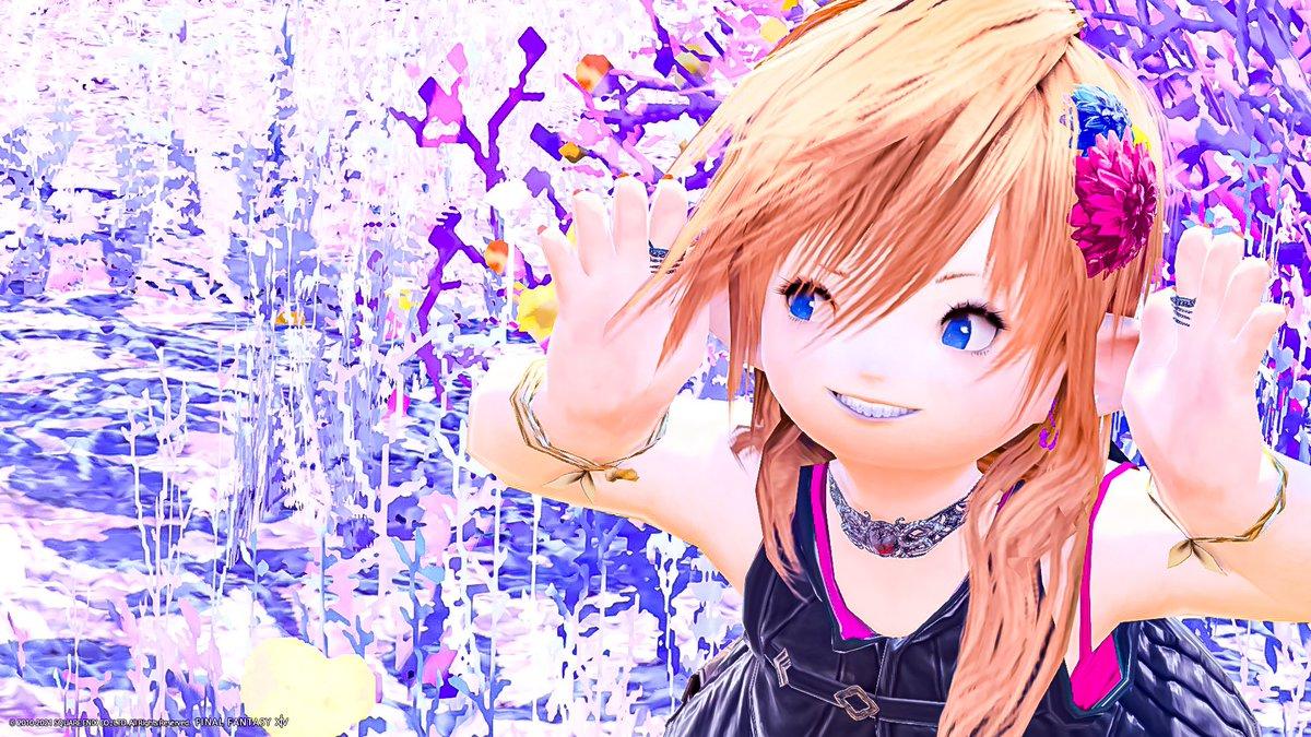 翔@Animaさんの投稿画像