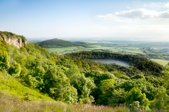 Yorkshire has a lot to offer with its beautiful countryside, historic buildings, and its beautiful history. We should support local businesses, hotels, b&b's and attractions, post pandemic.  -Patricia Yates, CEO of  @VisitBritain @patriciayatesVB