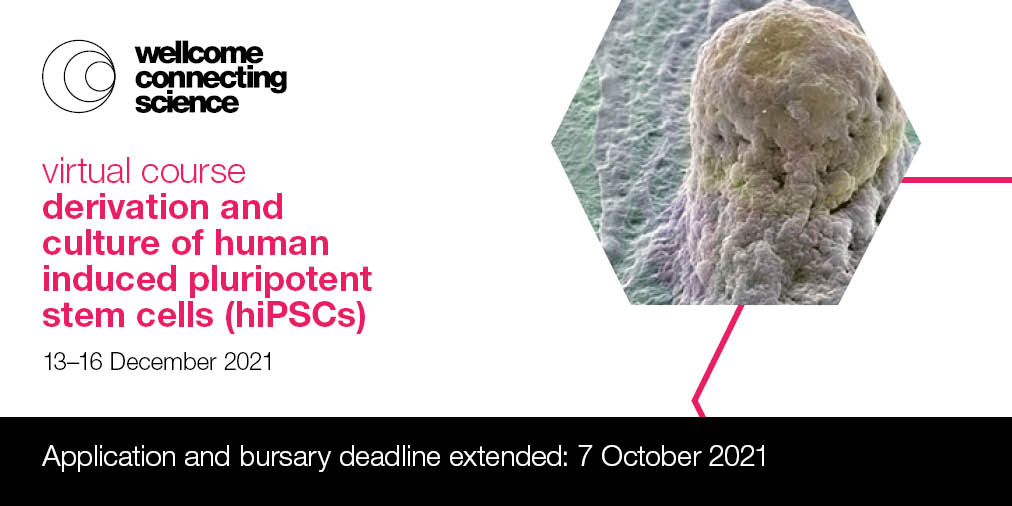 Check it out 👇🏻 Derivation and Culture of Human Induced Pluripotent Stem Cells (hiPSCs) virtual course at Wellcome Sanger Institute  @sangerinstitute @eventsWCS @SangerCGAP registration extended until 7th of October 🧫 retweet to reach more people that might be interested! 🙂