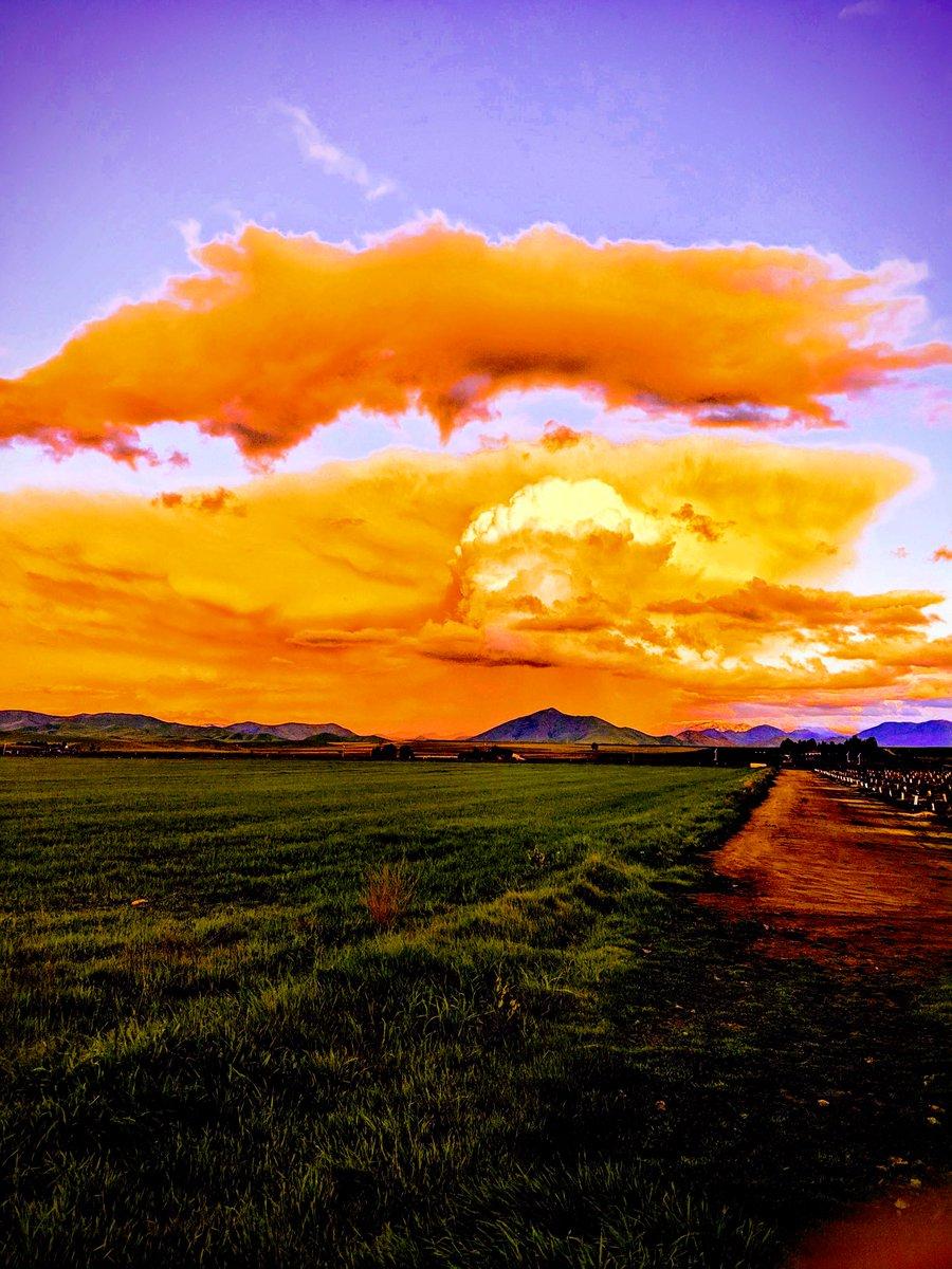 Spring California Evening #iphone #Sunset #countrylife #clickasnap