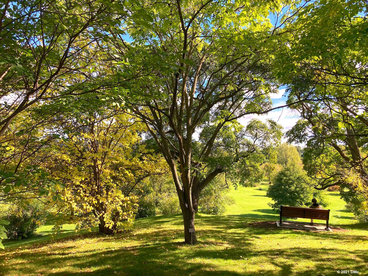 Bench with a View. Dominion Arboretum, Ottawa. #fall #nature #trees #city #travel #cycling #photography