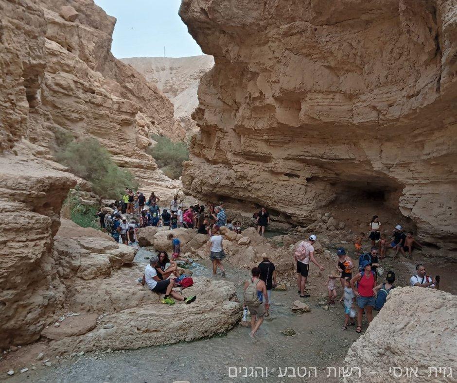 رقم قياسي من المتنزهين الإسرائيليين في عيد المظلة اليهودي: أكثر من 1.2 مليون