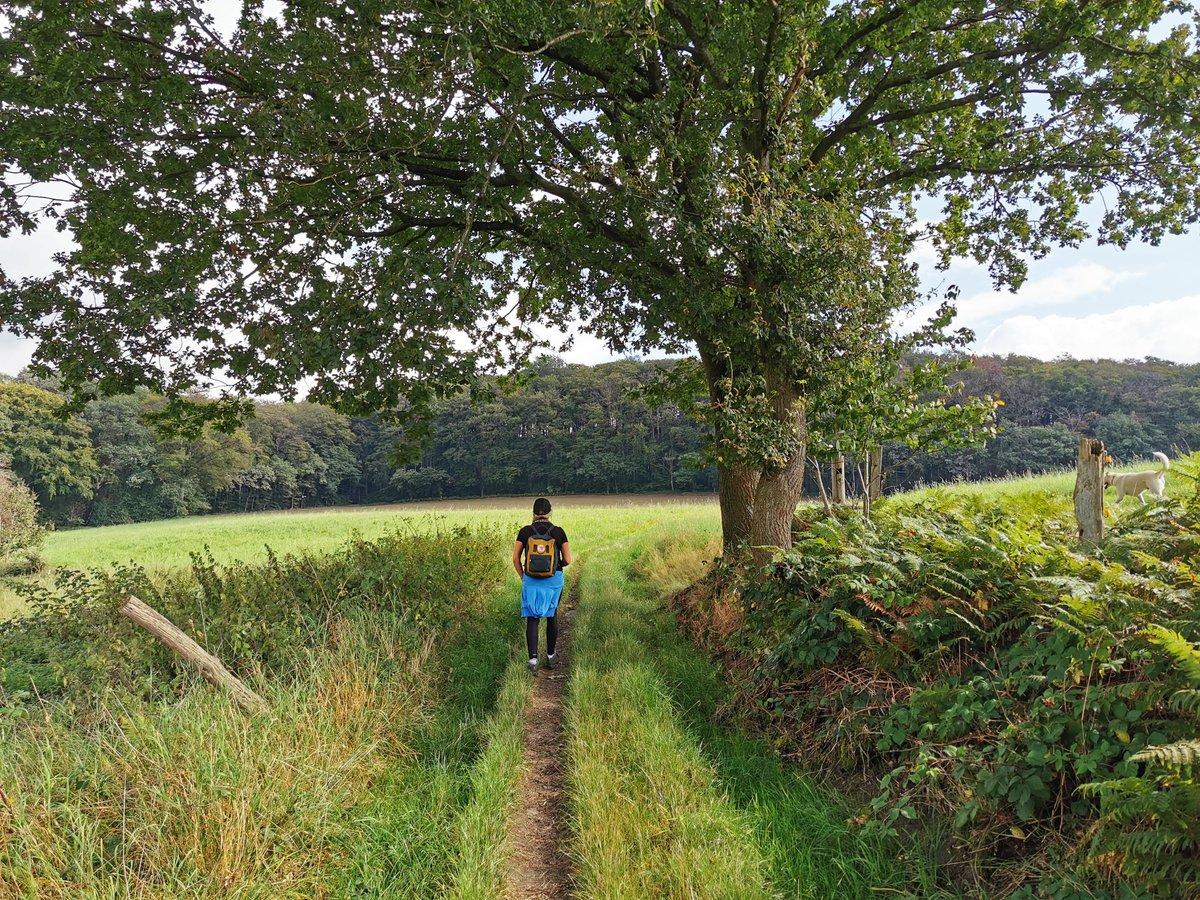 Frühstücksliebe, Altstadtflair, Alpakas und gaaanz viel Natur. 😍 Heike und Katalina sind 10 Kilometer durch das Hügelland von Hattingen nach Sprockhövel gewandert: https://t.co/uEZloYFEqS 🍂 https://t.co/Tc99Dw6j0C