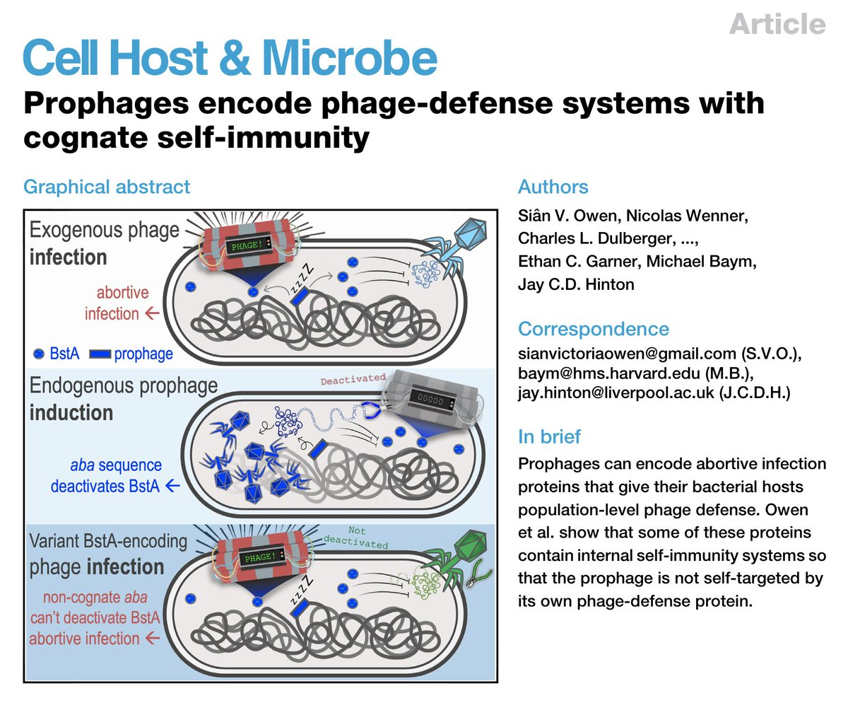 This is one of the most intriguing scientific mysteries I had pleasure of discussing and thinking about in my career. I'm sure this system contains many mysteries and opportunities - we all know how cool phage defense systems are. Congrats to @implosian @NWenner et al.!