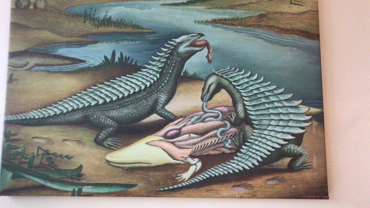 #FossilFriday 1949 interpretation of #triassic #aetosaurs as scavengers  based on the skull of Longosuchus meadei.
