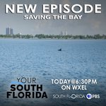 Image for the Tweet beginning: NEW @YourSouthFL episode #SavingtheBay today
