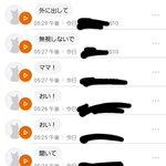 意外とあなどれない!?猫語翻訳アプリって合ってる説ある!
