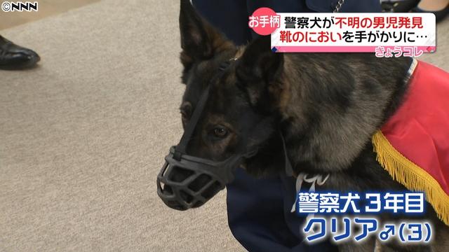 【表彰】広島県の警察犬、行方不明の男児を発見靴のにおいを手がかりに、捜索開始から5時間後、山頂付近で男児を見つけ出した。男児に大きなけがはなかった。福山西警察署は、賞状と記念品のドッグフードを贈ったという。