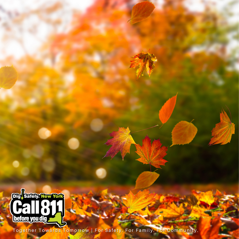 SAFETY TIP: We love fall, but it can pose a hazard when leaves fall. Flags can be torn out when…