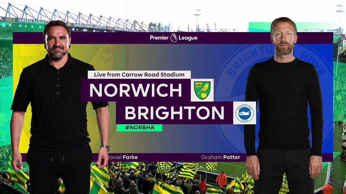 Norwich City vs Brighton Highlights 16 October 2021