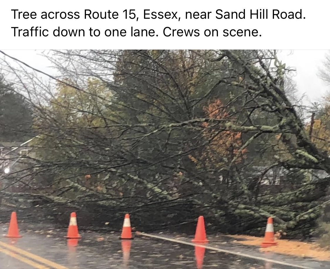 We are receiving reports of trees down near Essex, VT.