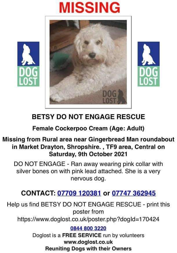 🐕 #URGENT BETSY NERVOUS RESCUE #MISSING WITH PINK LEAD ATTACHED #Lost on Saturday 9 October from Rural area nr Gingerbread Man roundabout #MarketDrayton #Shropshire #TF9 Has only been in new home 3 days. Wearing pink collar with silver bones DO NOT CHASE facebook.com/groups/9670856…
