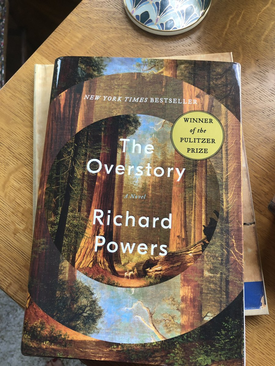RACHEL's BOOK CLUB DAY! I need rainy day book recommendations! Tell me one of your favorite books? I'll go first: The Overstory by Richard Powers.