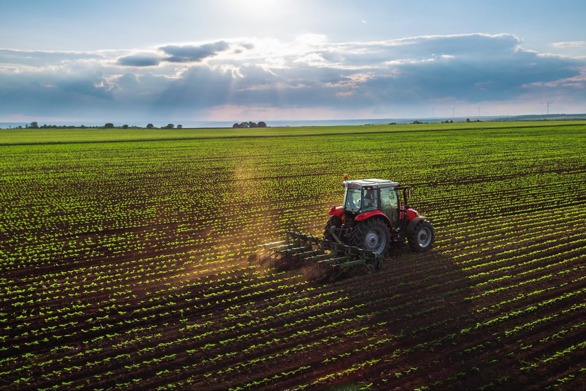 test Twitter Media - Why Revolutionizing Farming Should Be the Next Space Race https://t.co/XR6OJYM2Jz #Business #Startup #Success https://t.co/3AfWxeNkYM