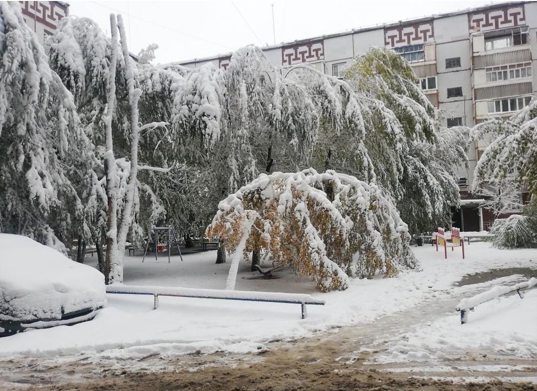 Près de 20 cm de #neige ce 6 octobre à #Ekibastuz, dans le nord-est du #Kazakhstan. C'est l'équivalent de la moyenne du mois, tombé en seulement 24h. #snow