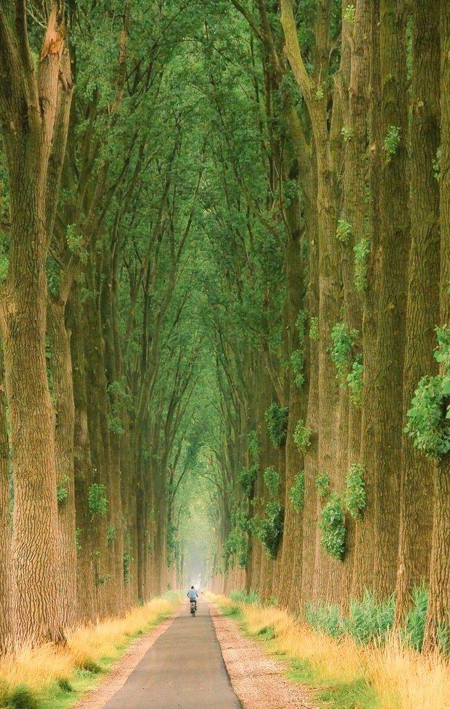 Amazing 😍 #NaturePhotography