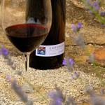 Image for the Tweet beginning: Tres vins @DOEmporda s'enduen el