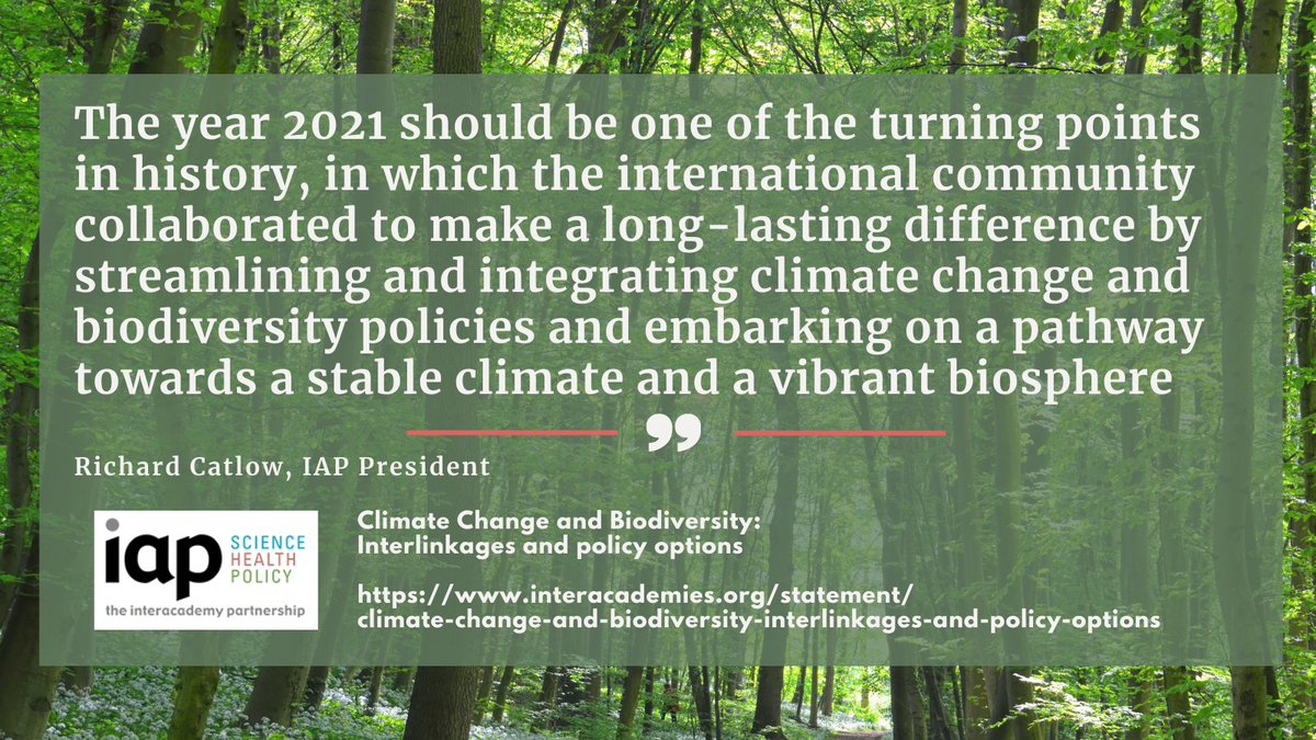 World academies launch an action plan to combat both climate change and biodiversity decline. Indeed, all efforts are required to establish synergies in combating climate change and biodiversity loss. And we need to act now!