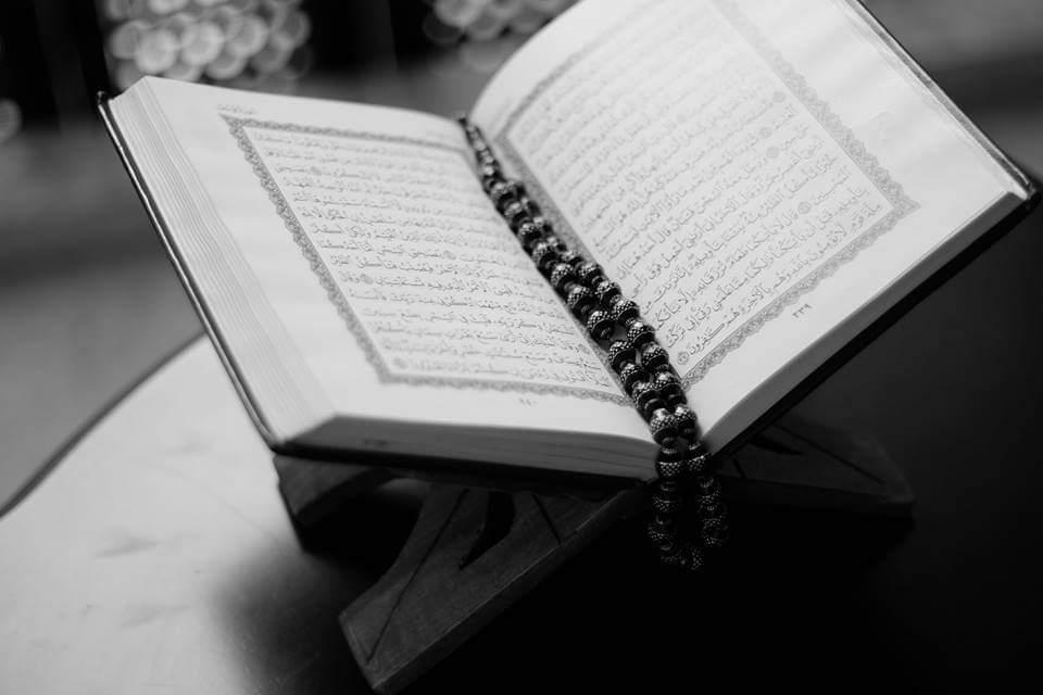 نتقدم بأطيب التهانئ لأصدقائنا المسلمين بمناسبة حلول المولد النبوي الشريف. تمنياتنا لجموع المسلمين في…