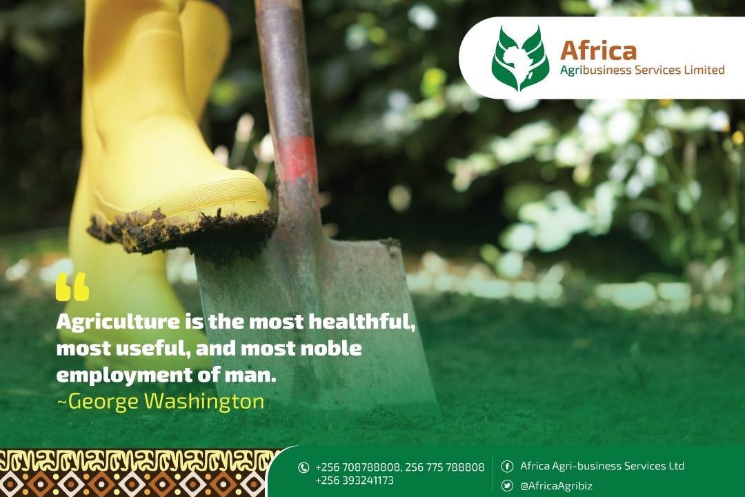 AfricaAgribiz photo