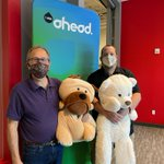 Image for the Tweet beginning: Just a couple of teddy