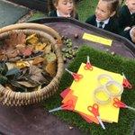 Image for the Tweet beginning: #SJVRAH #SJVArt 👸🍁🍂🤴Making Autumnal Crowns