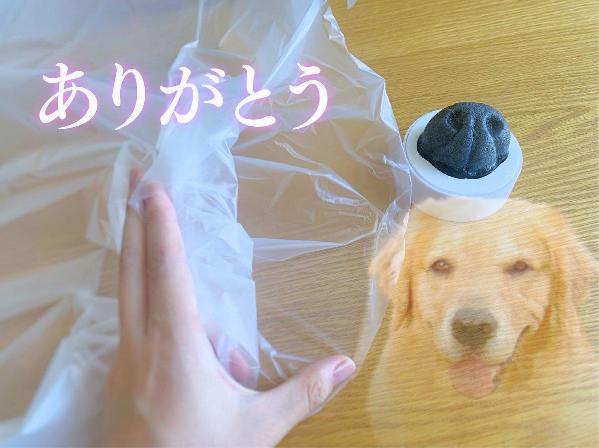 リアルすぎる作りに驚き!犬の濡れた鼻でレジ袋を開けることが出来るスポンジが話題!