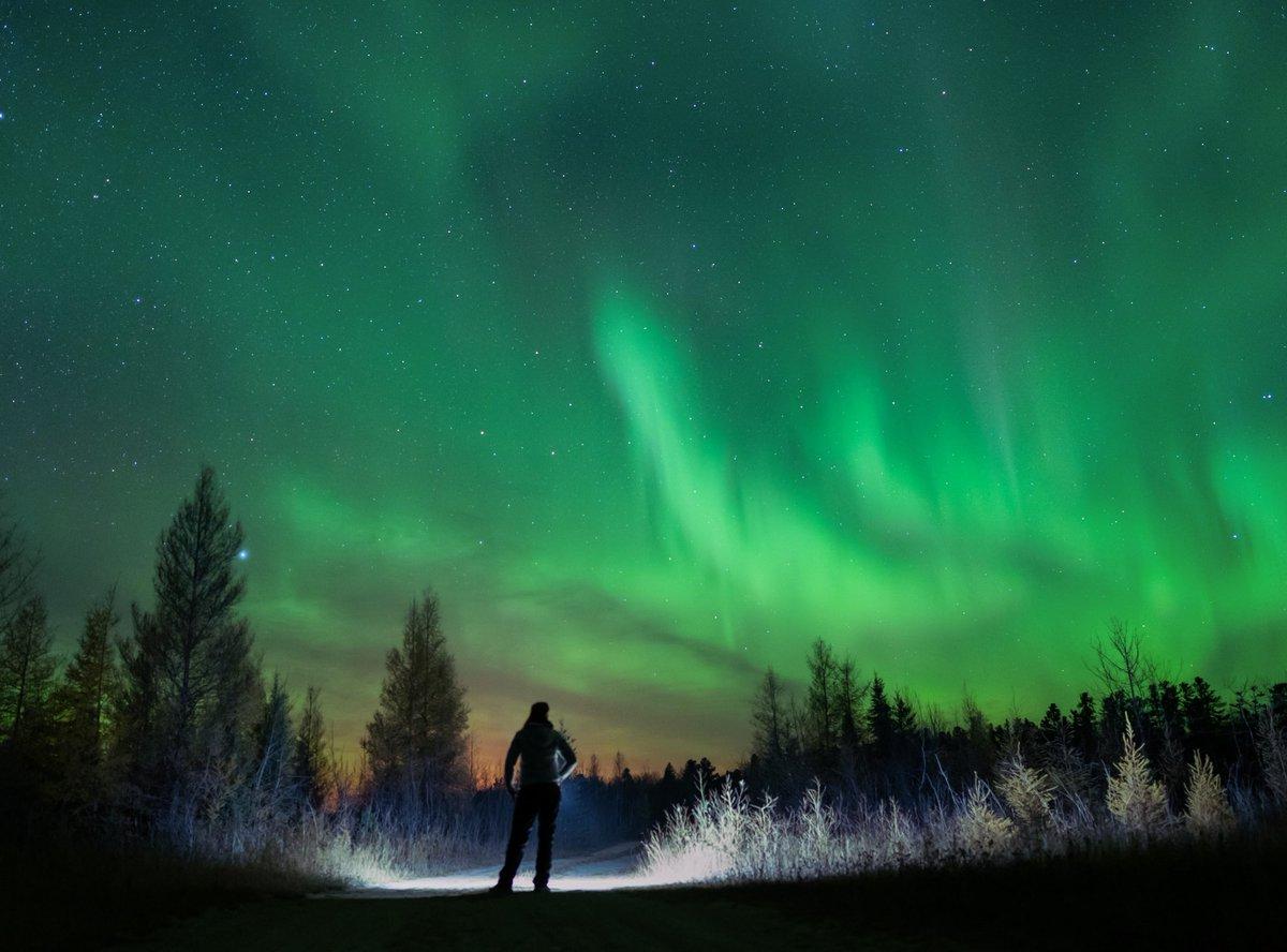 Les aurores boréales ont été intenses la nuit dernière dans le nord du #Canada ! #NorthernLights