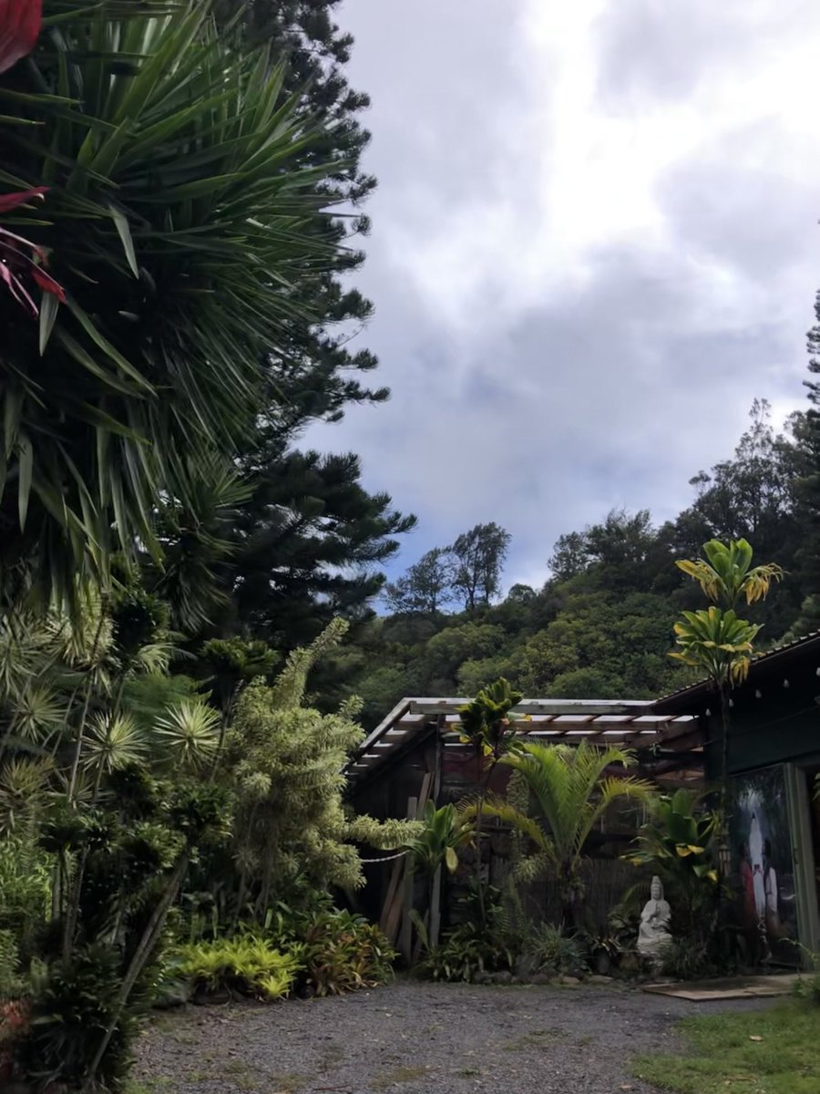 test Twitter Media - Mostly overcast with sprinkles in Makawao. #CMWeather #Maui #Makawao #SacredGarden #MagicalMaui #Mauinokaoi https://t.co/rkNIWXnYZY