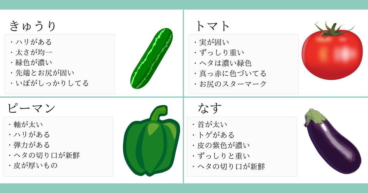 おいしい野菜の選び方まとめ!どうせ食べるなら美味しい物を!
