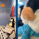 Image for the Tweet beginning: ⚓️ COO EE! 🐧Emma penguin