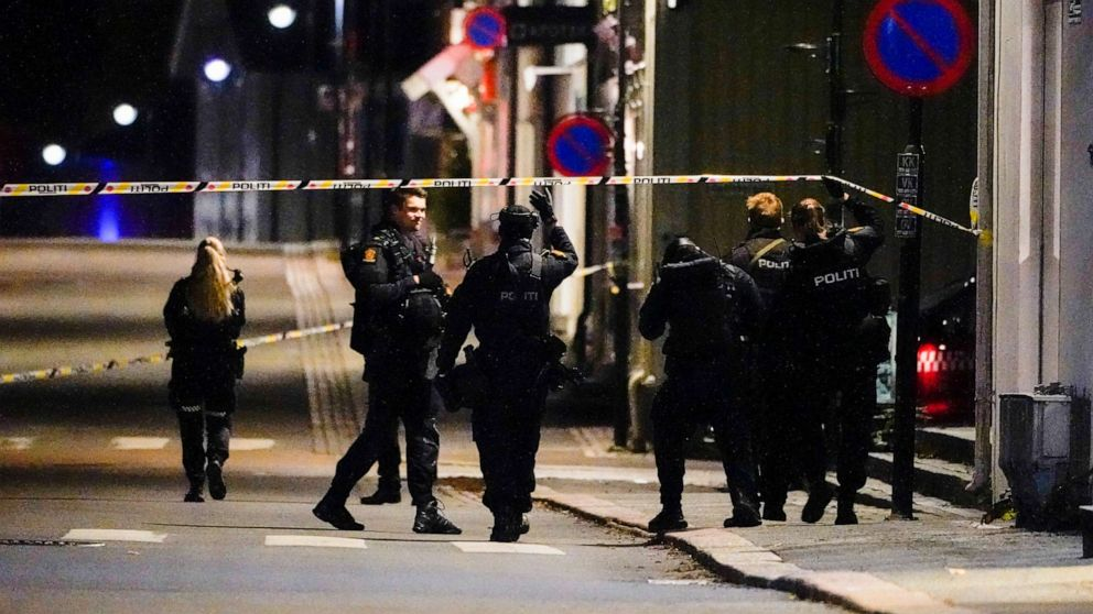 5 dead, 2 injured in random bow and arrow attack in Norway