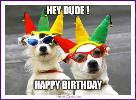 #HappyBirthday to my hooman brother #Nic! Have a great bday today! #woof #zekethefreak #Zekethedog #letsparty! Ps - save me some cake bro!
