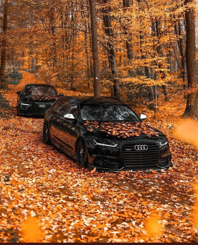 Audi Rs6 🇩🇪🍁 https://t.co/CtESUK7jhY