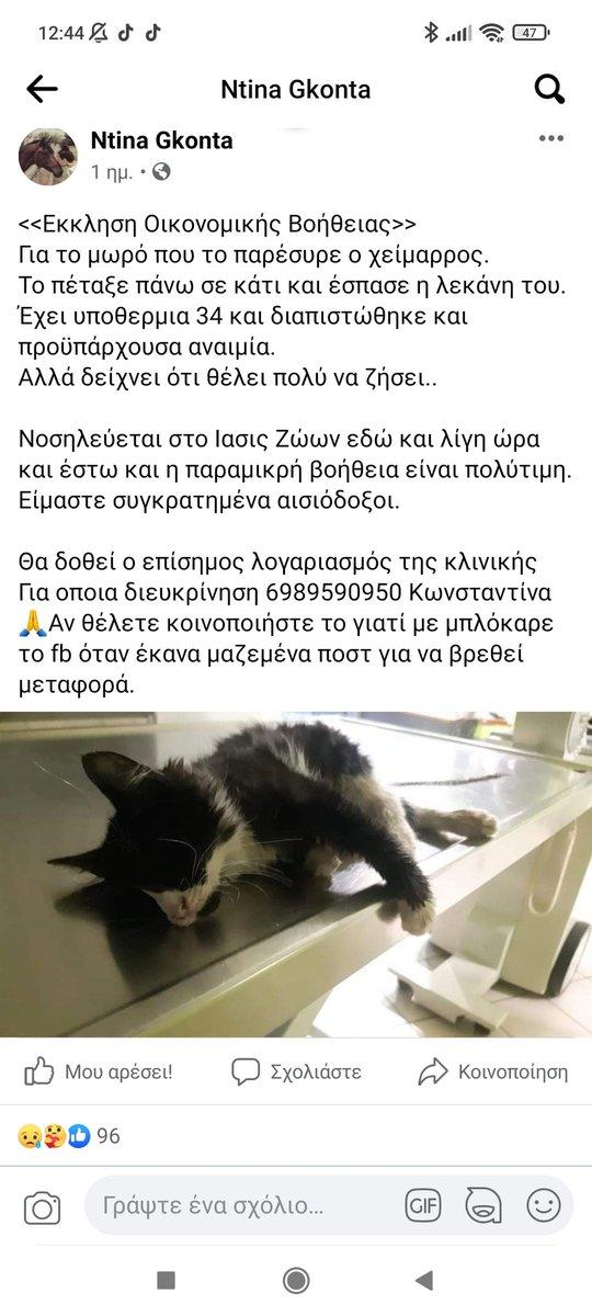 Sos! ❗   #ζωα #γατακια #κακοκαιρια_Μπαλλος #κακοκαιρία #πλημμυρες #BigBrotherGR #gntmgr #TheBachelorGR #Sasmos #σασμος