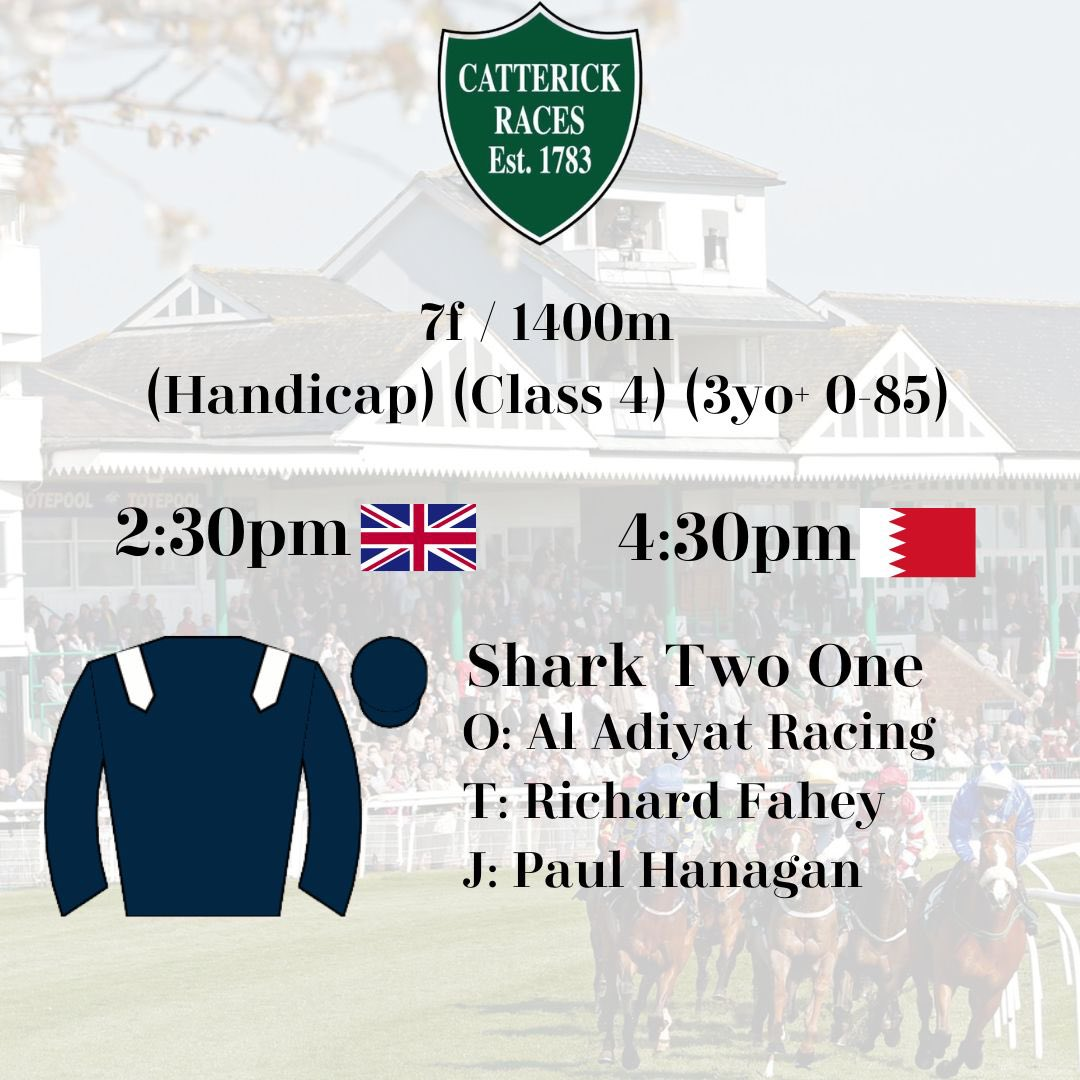 SHARK TWO ONE heads to Catterick this afternoon as he steps back up in trip to 7f / 1400m 🦈🏇🏼🇧🇭  Good luck to connections🤞🏼