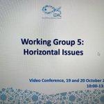Image for the Tweet beginning: Starting @LDAC_eu WG5 on horizontal