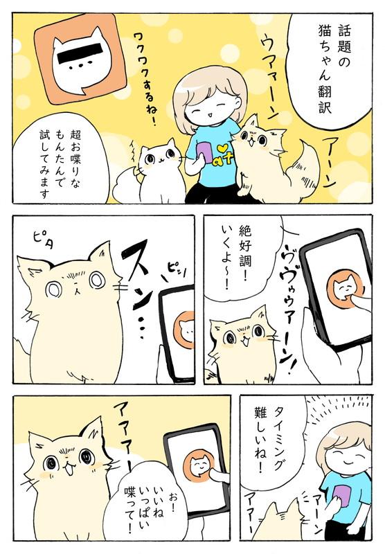 スン……てなるよねネコ語翻訳アプリを愛猫に試そうとしたら…… 切ないネコあるあるを描いた漫画にうなずきが止まらない
