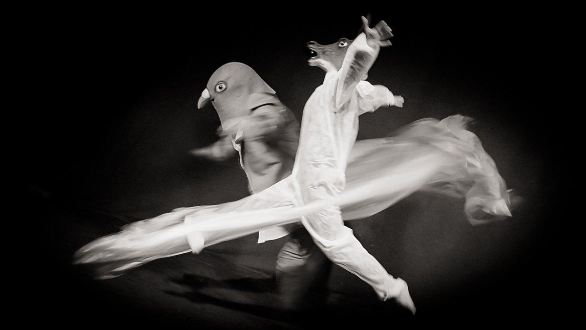 """11/12 – """"sie tanzen"""" – Achim Kirsch, Stina Kurzhöfer. Mehr unter: <a href=\""""https://t.co/VeLhWgoMQ0\"""" class=\""""link-tweet\"""" target=\""""_blank\"""">https://t.co/VeLhWgoMQ0</a> Das #Lichtfestival im #Sauerland. 21.10.-24.10. 👉Alt-Arnsberg #Licht #Kultur #Lichtkultur #Arnsberg #Lightart #Lichtkunst #Digitalisierung #LichtforumNRW Bild: Achim Kirsch <a href=\""""https://t.co/iQAfmwAbpa\"""" class=\""""link-tweet\"""" target=\""""_blank\"""">https://t.co/iQAfmwAbpa</a>"""