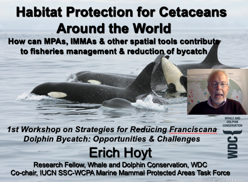 Good & difficult questions after my presentation. How to make marine protected areas for #franciscana #dolphins do their intended job, i.e. ensuring enforcement, public education, high level of protection. @marinemammalogy @MarineMammalCom  Video is here: https://t.co/NJpmqXIB9S https://t.co/wmTUv25R2x